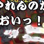【ツムツム】8000の宝箱をパッチは1ゲームで破壊できるのか?!【トレジャーハント】
