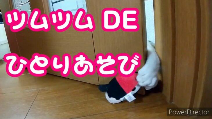 ツムツム DE ひとり遊び!!【 ドアのスキマ編 】