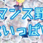 【ツムツム】ロマンス野獣 スキル6    氷いっぱい消し!
