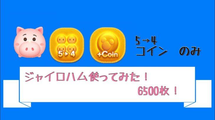 ジャイロハム スキル6 5→4、コインのみ 6500枚‼︎