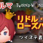 【ツムツム】新ツム「リドル・ローズハート」をスキルマでプレイ!【強化アクア!】
