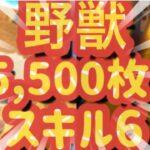 【ツムツム 】野獣!スキル6!5,500枚!ジャイロ必須!コイン稼ぎ!